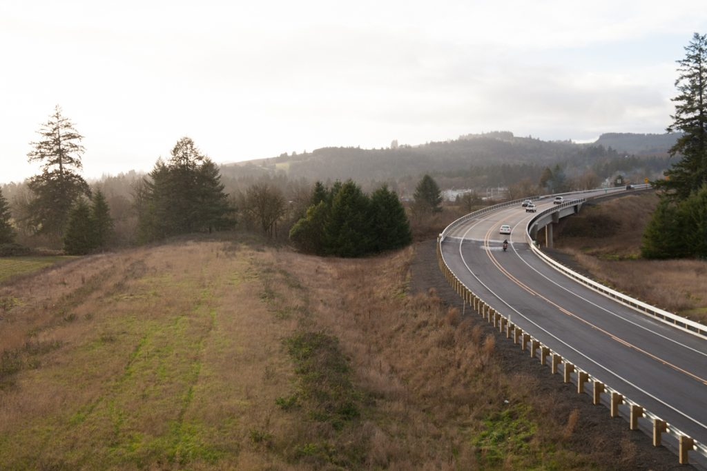 Looking south/westbound as the bypass curves rightward towards Dundee. This also shows the right-of-way for the future eastbound lanes on the left as they disappear into a grove of trees.